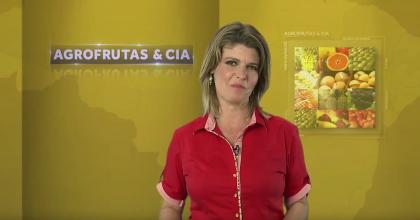 Cobertura Hortitec  AgroFrutas & Cia