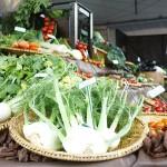 Hortitec é vitrine da produção brasileira de hortifrútis para o mundo