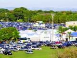 22ª HORTITEC espera reunir 27 mil visitantes em Holambra