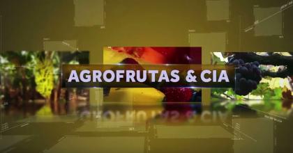 Programa Completo – 10/07/2017 – Exportação | Alta da Melancia | Hortitec | Limão do semiárido